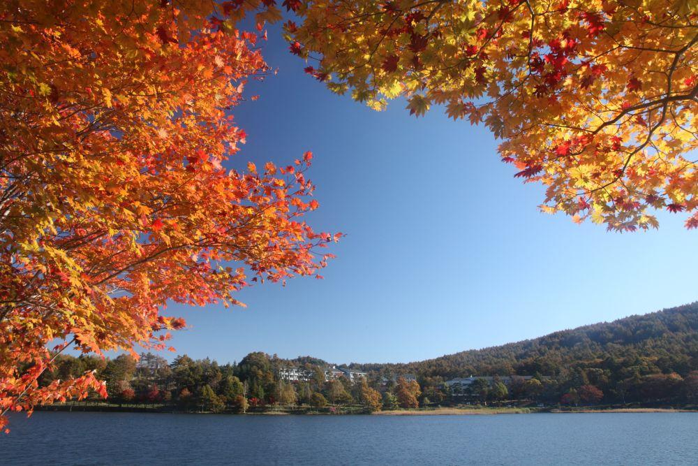 秋のおすすめ観光スポット